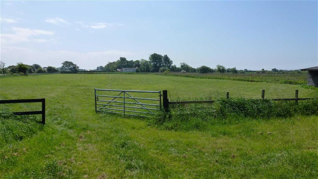 Home Paddock & Field