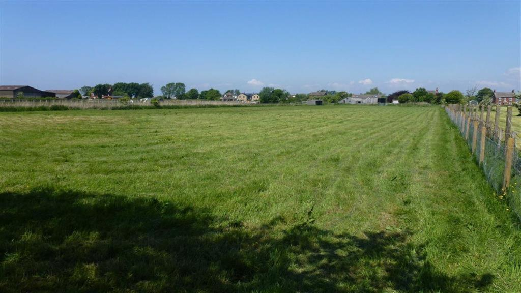 Field View to North