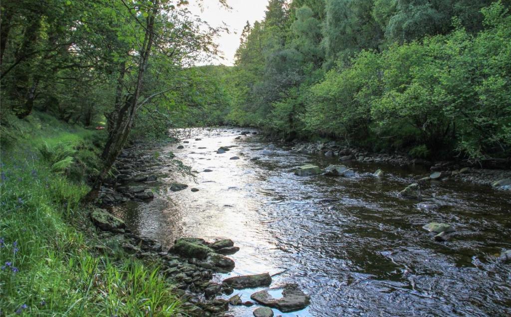 River - Fishing