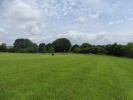 Land in 6.40 acres of productive for sale