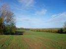 Dunley Land for sale
