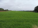 Land in Lot 1: 5.58 acres for sale
