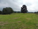 Land for sale in Lot 3. 6.62 acres...