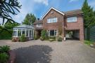 Hadleigh Detached property for sale