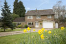 4 bed property for sale in Icehouse Wood, Oxted...