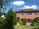 semi detached house to rent in Margaret Reeve Close...