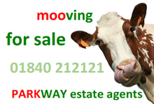 Parkway Estate Agents , Camelford