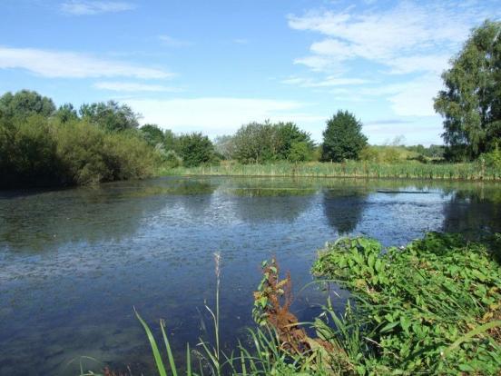 Canal Basin