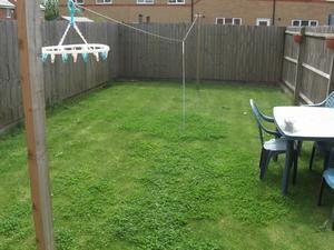 Rrear garden