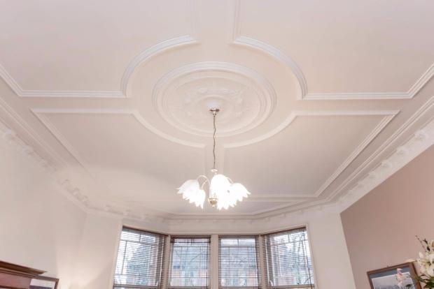 Cornice & Ceiling