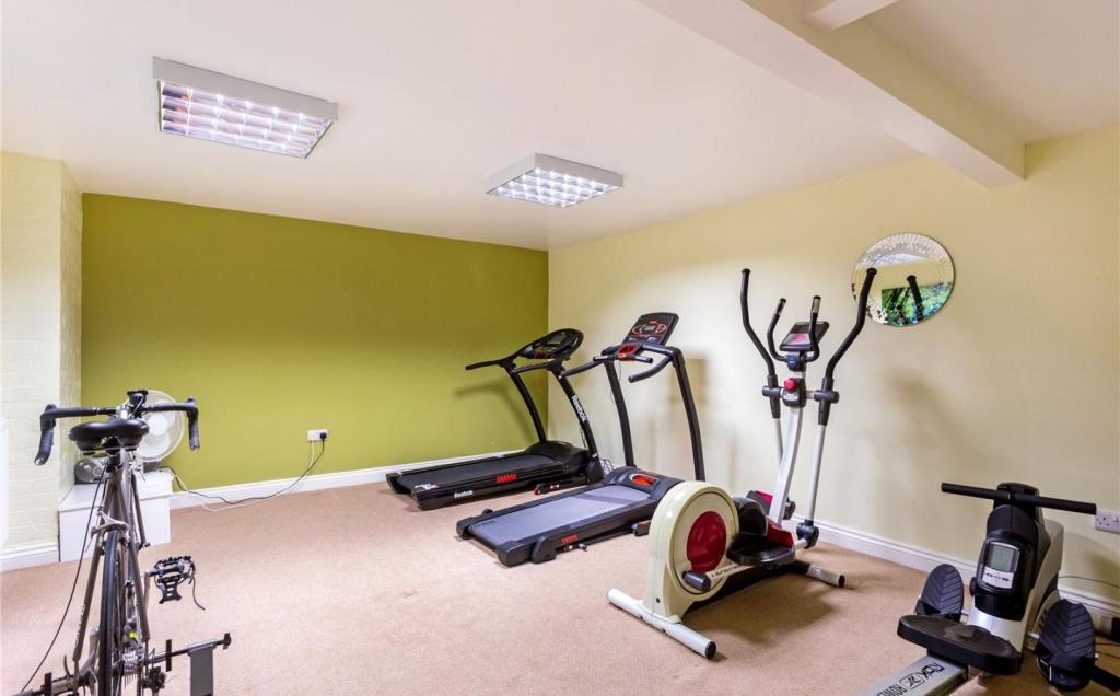 Bedroom/Gym
