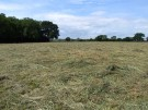 Land at Sturge Farm Land for sale