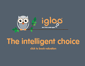 Get brand editions for Igloo , Hamilton