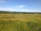 Farm Land in 50 Acres of Grade II...