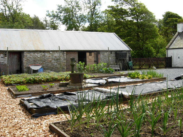Raised Beds & Barns