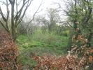 Land in Cass Lane, Knaresborough for sale