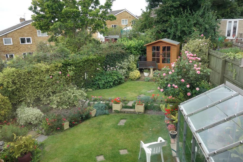 rear garden high.JPG