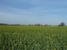 Farm Land in Ringsfield, Beccles for sale