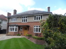Detached property to rent in Boscombe Manor