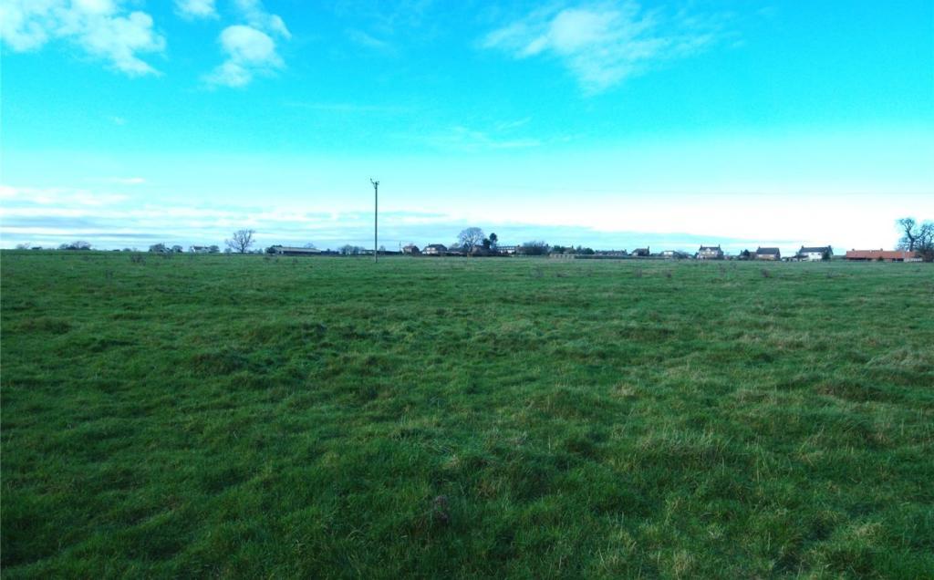 Grass Lot 1