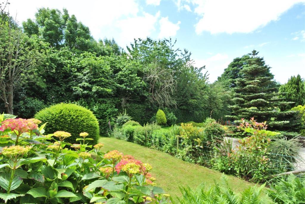 The garden and surro