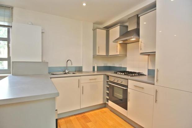 Modern Kitchen with