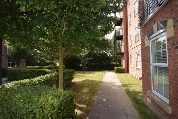 Communal garden with entrance to Darley Park
