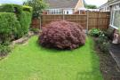 garden area