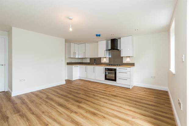 Kitchen/ Living Area