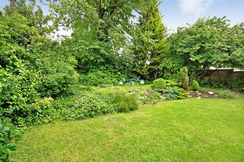photo of garden rear garden