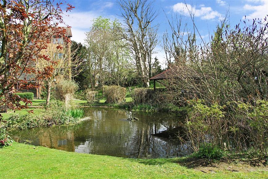 Communal Grounds/Pond
