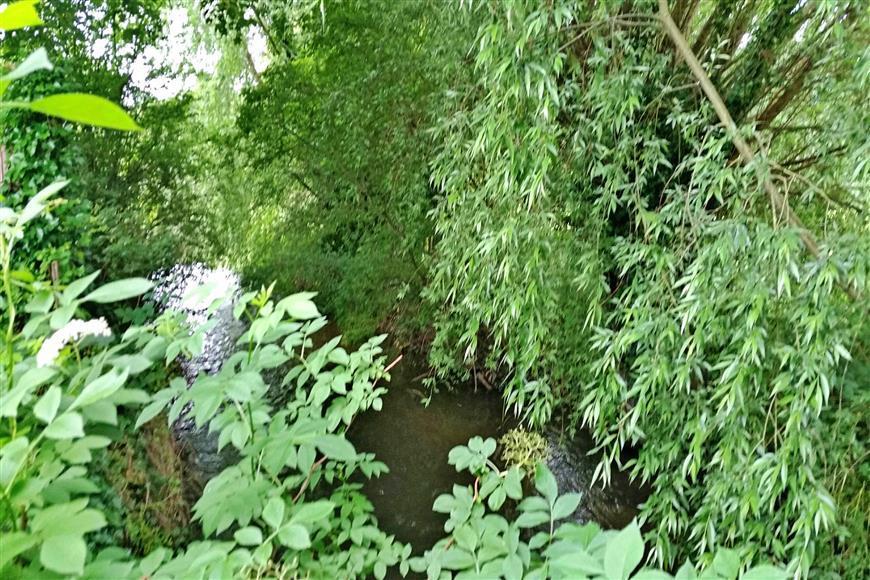 River Darent Rear Of Development
