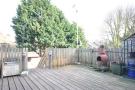 Rear Garden (Original)
