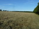 Farm Land in CLIPSHAM ROAD, Stretton...