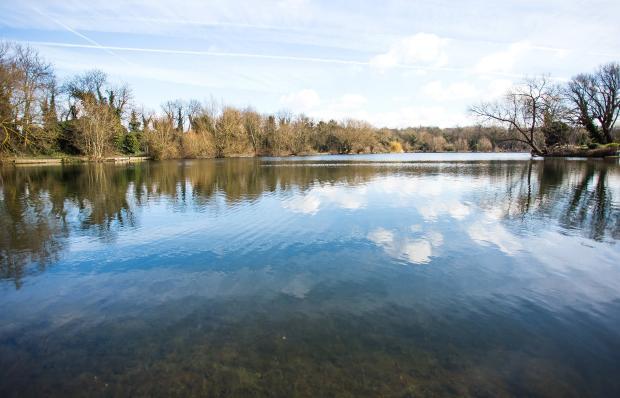Brooklands Lake