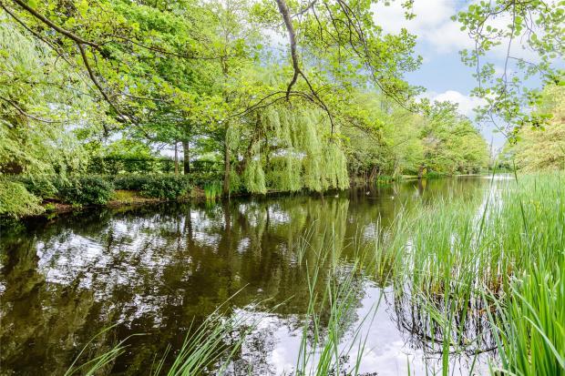 Communal Lake