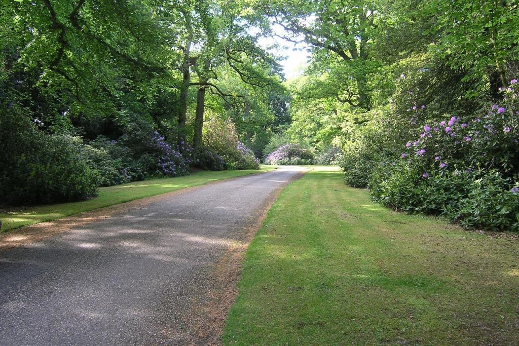 Main Driveway 2.JPG