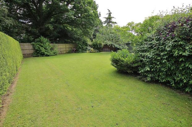 Rear Garden 9.JPG