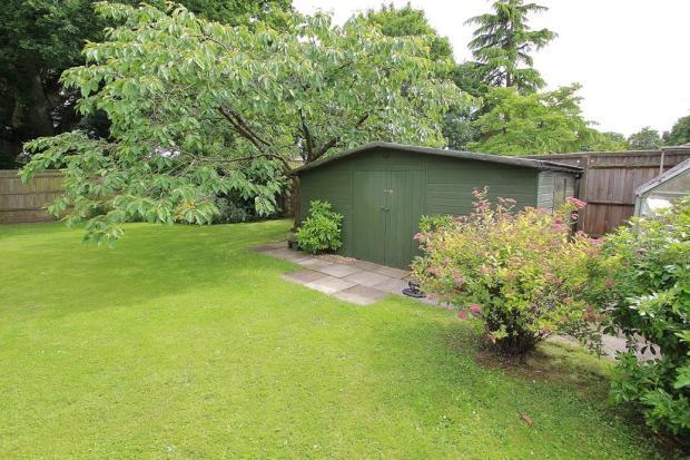 Rear Garden 10.JPG