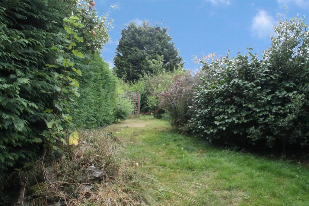 Hastings Road Garden