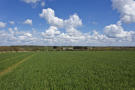 51.48 acres of arable land Farm Land