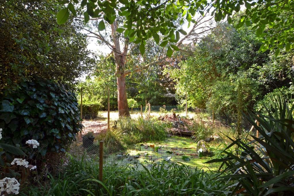 Front garden pond