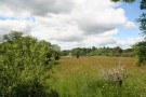 Plot for sale in Plot at Millside...