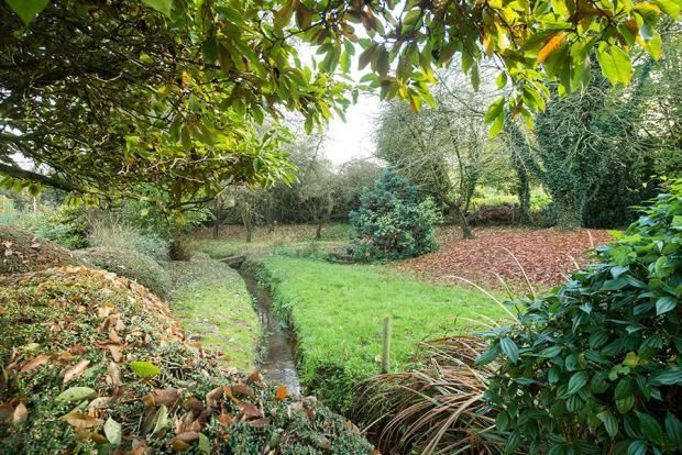 Willow Barn