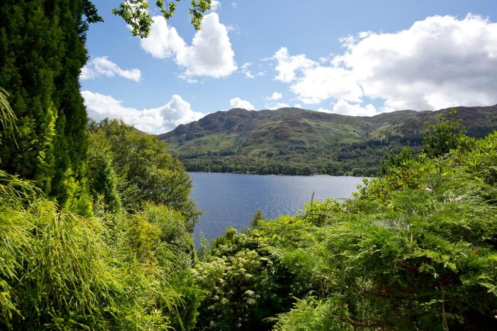 View Of Loch Earn