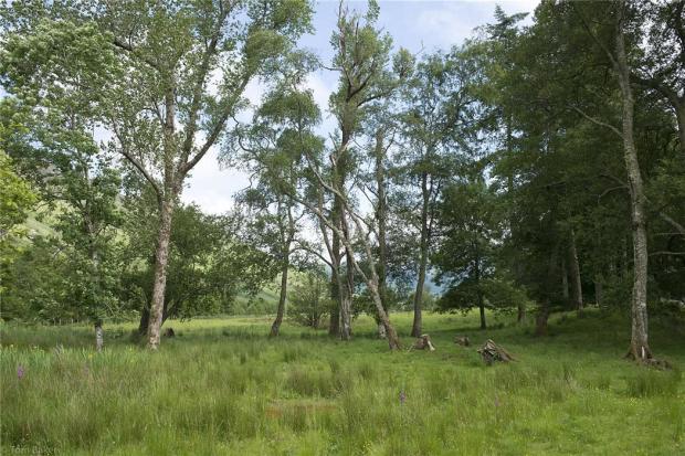 Land Near Glenelg