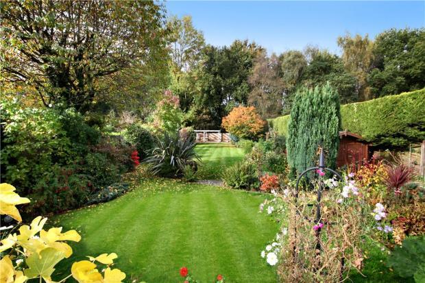 Garden: Rear