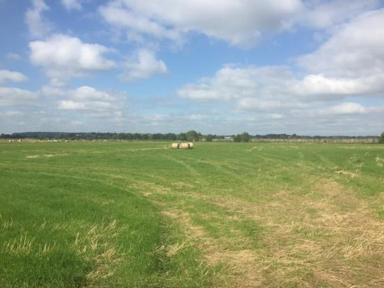 Land At Abbey Farm