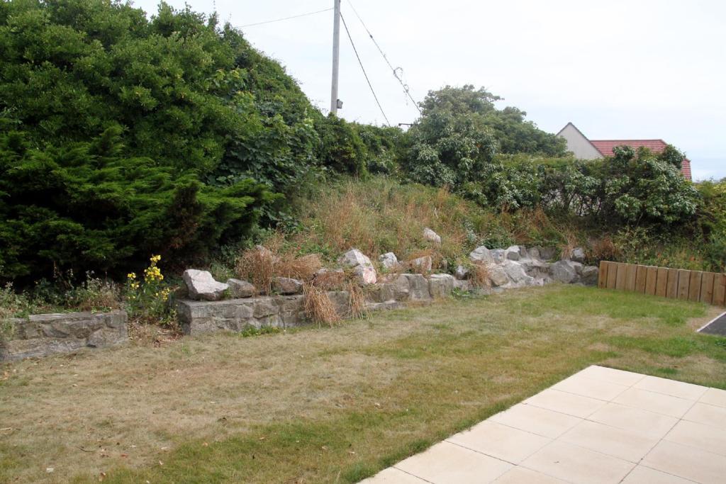 Garden2 .JPG