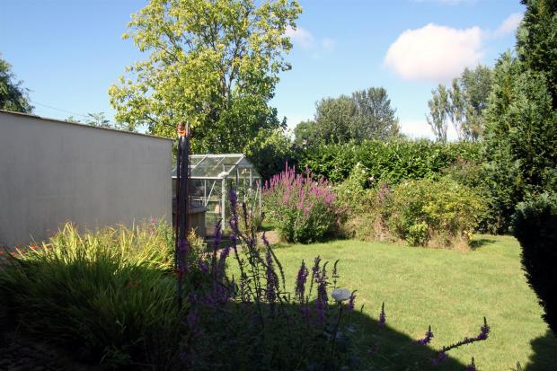 Garden 3.JPG